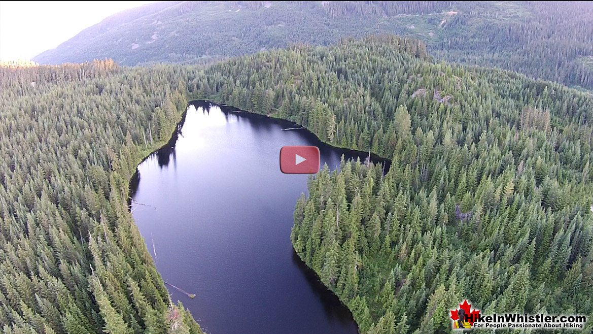 Ancient Cedars Aerial Video - We Rent Gear Whistler